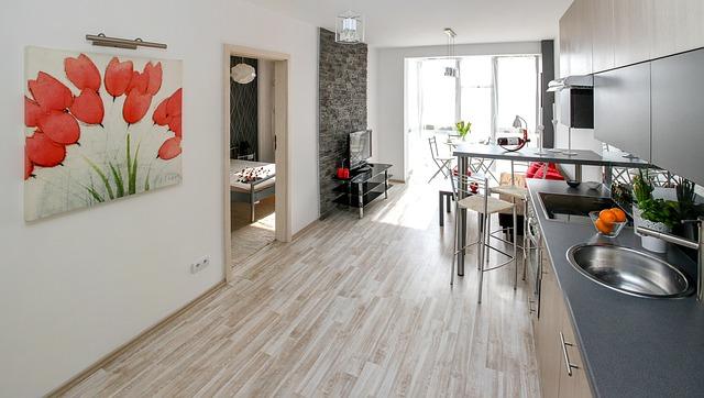 salon łączony z kuchnią